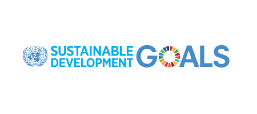 Sustainable Development Goals: You're Already More Aligned than You May Think