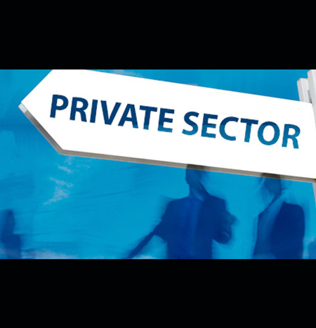 The Private Sector's Role in Defining Citizenship